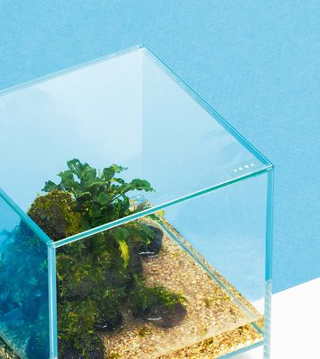 NEO GLASS COVER 20x20